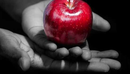 frutas para hechizos